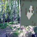 In MIT project, drones map without GPS